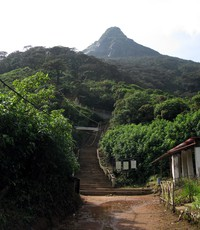 Adam's Peak from underneath